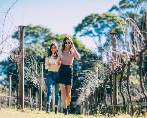 mount-tamborine-two-women-walking-through-vineyard-at-witches-falls-winery-(1)